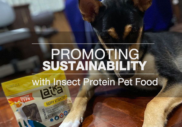 Promoting Sustainability with Insect Protein Pet Food
